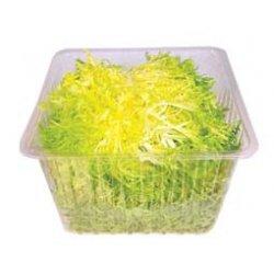 Salat Frisee