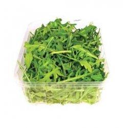 Salat Ruccula