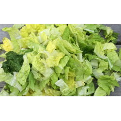 Salat Romano Kuttet