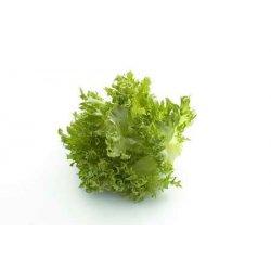 Salat Crispi
