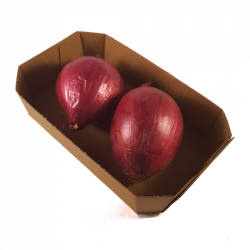 Økologisk Rødløk i beger