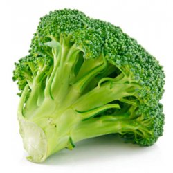Økologisk Brokkoli