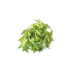 Ruccula Salat Vasket